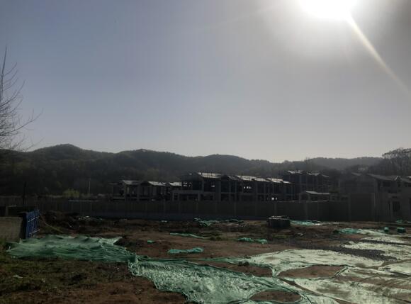 春分时节的南湾·桃李春风工程进度